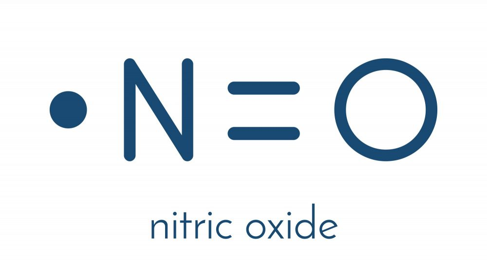 What is nitric oxide and what does it do