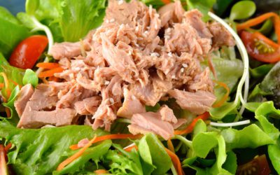 Tangy Tuna Salad Recipe for Diabetics