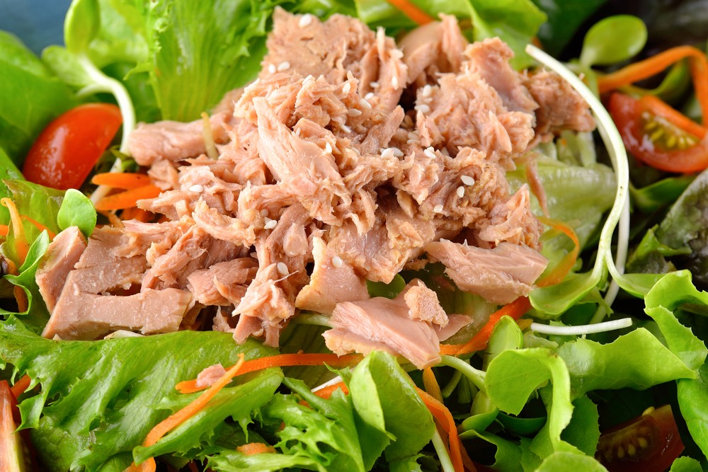 Tangy Tuna Salad Recipe For Diabetics Diabetes Self Management
