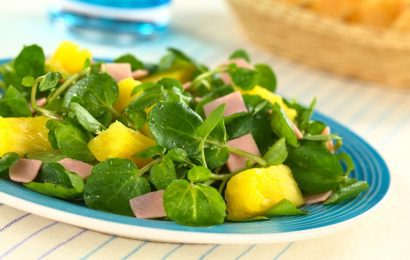 Ham and Pineapple Salad for One