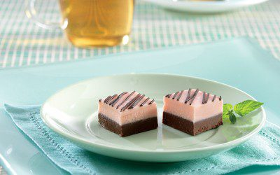 Mint Chocolate Fudge Squares