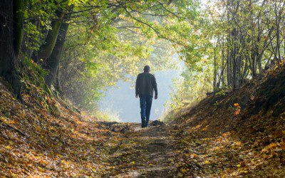 Finding Comfort in the Face of Difficulties