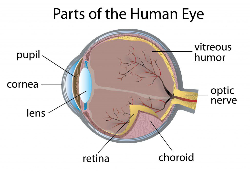 Drug Approved to Treat Diabetic Retinopathy