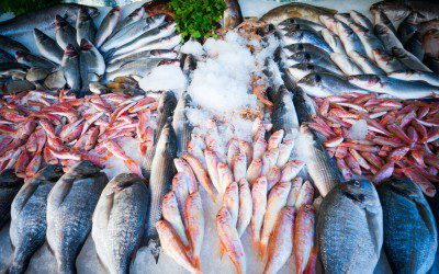 Going to the grocery store with diabetes the fish counter for Fish stores in utah