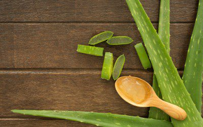 Aloe Vera May Improve Blood Sugar Control in Type 2 Diabetes, Prediabetes