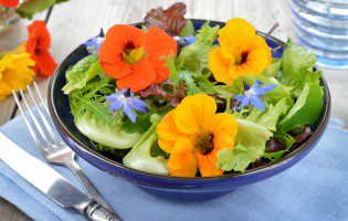 Edible Flowers: From Garden to Table