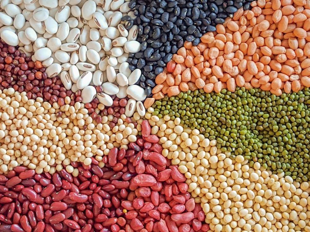 Celebrate National Eat Beans Day Today