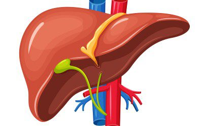 Diabetes Medicine Effective Against Liver Disease