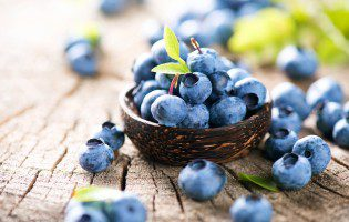 Celebrate National Blueberry Picking Day