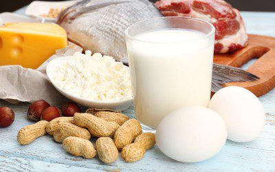 High-Protein Diet Does Not Improve Insulin Sensitivity