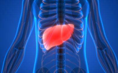 Preventing Fatty Liver Disease (NAFLD)