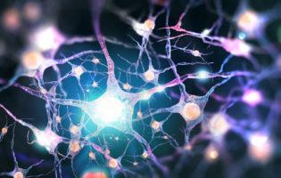 Diabetic Neuropathies on the Rise
