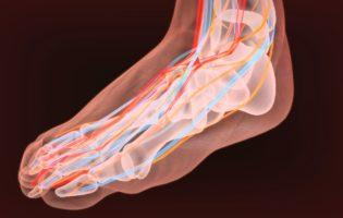 Lyrica CR Receives FDA Approval for the Treatment of Diabetic Neuropathy