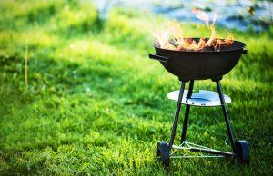 Four Favorite Low-Carb Summer Foods