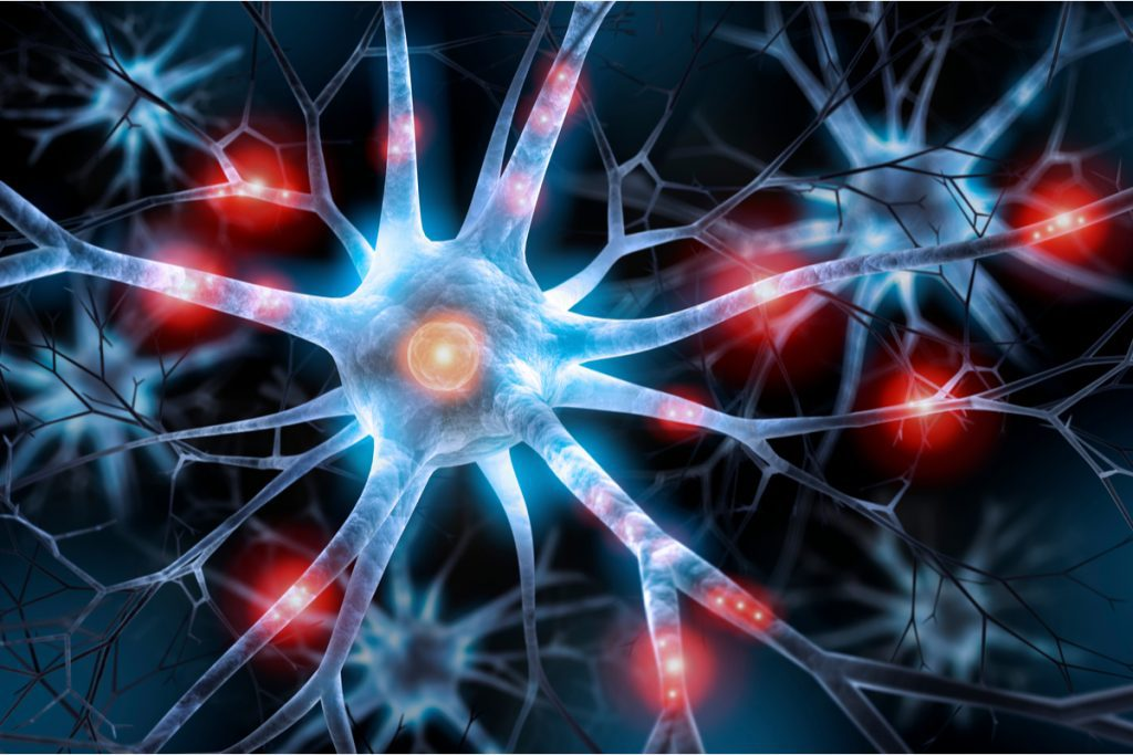 Nerve cell -- Loma Linda University Recruiting for Neuropathy Treatment Study