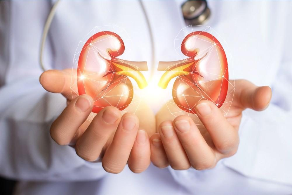 What Is Microalbuminuria & How to Test It