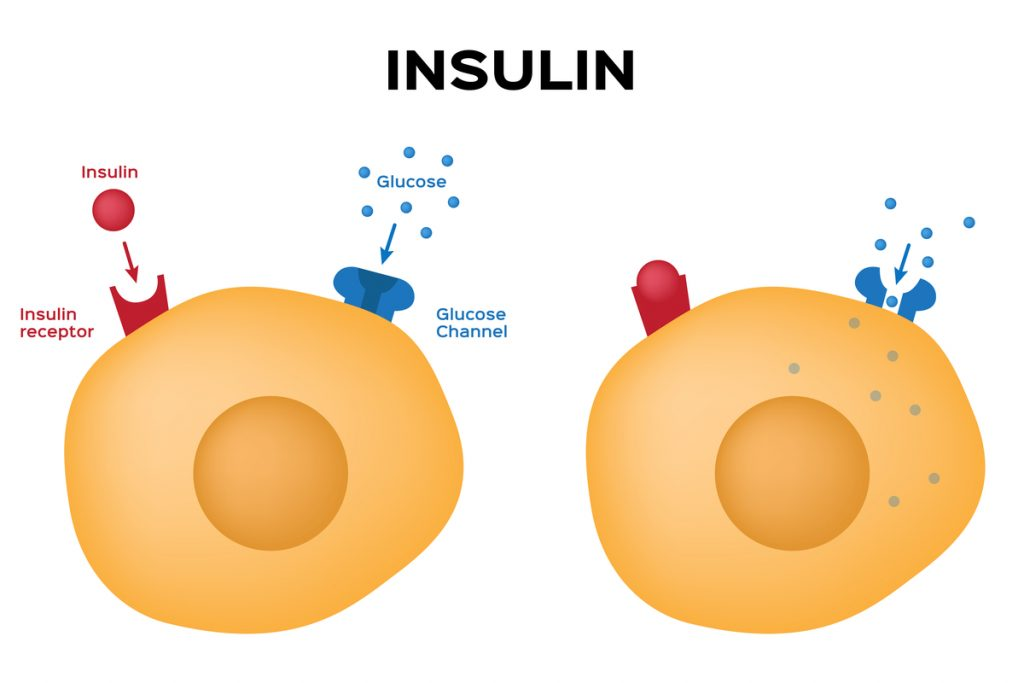 New Smart Insulin Patch Could Be a Game Changer