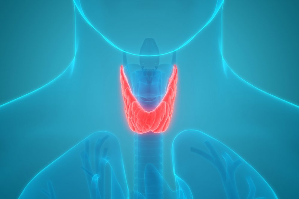 Diabetes and Thyroid Conditions