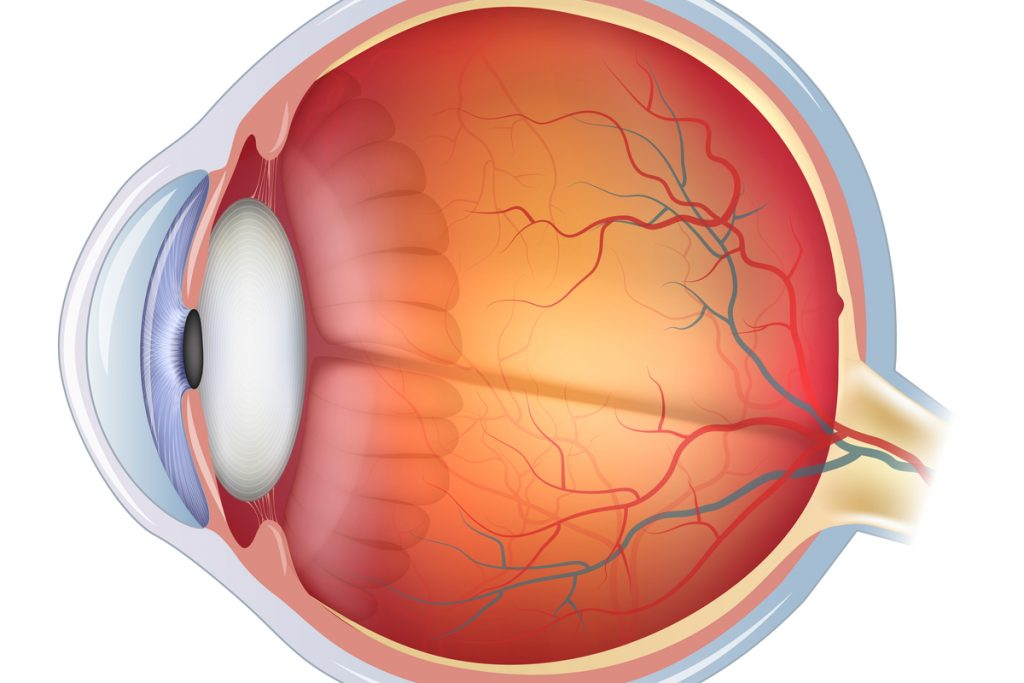 Retinopathy Research Reported