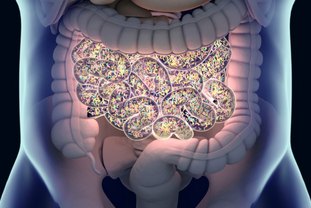 Diabetes and the Microbiome