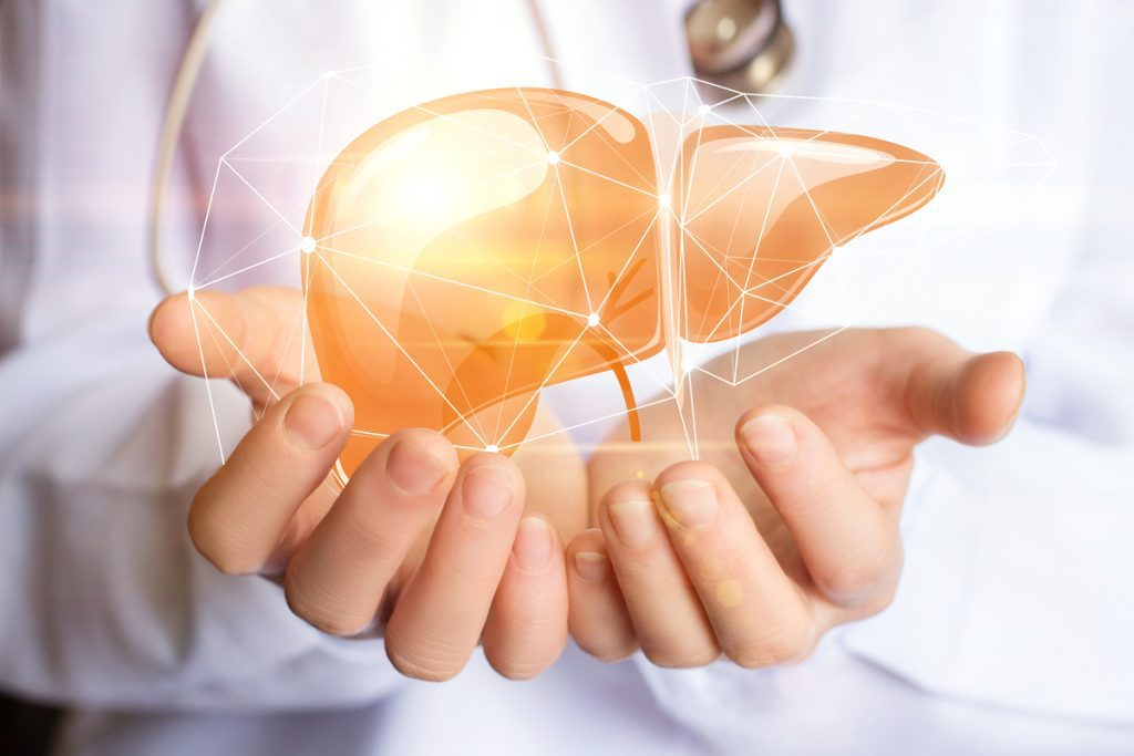 Doctor's hands holding virtual liver -- Liver Disease Type 2 Diabetes
