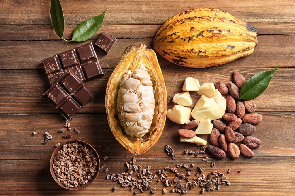 Cocoa Component Found to Improve Cognitive Health