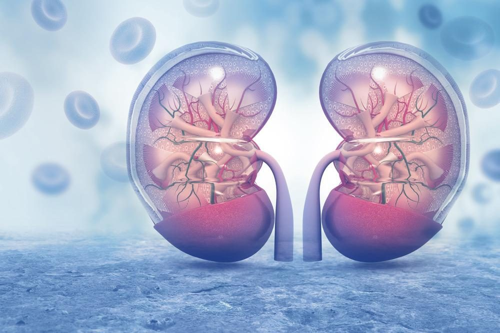 Kidney Disease Progression Related to Depression in Type 1