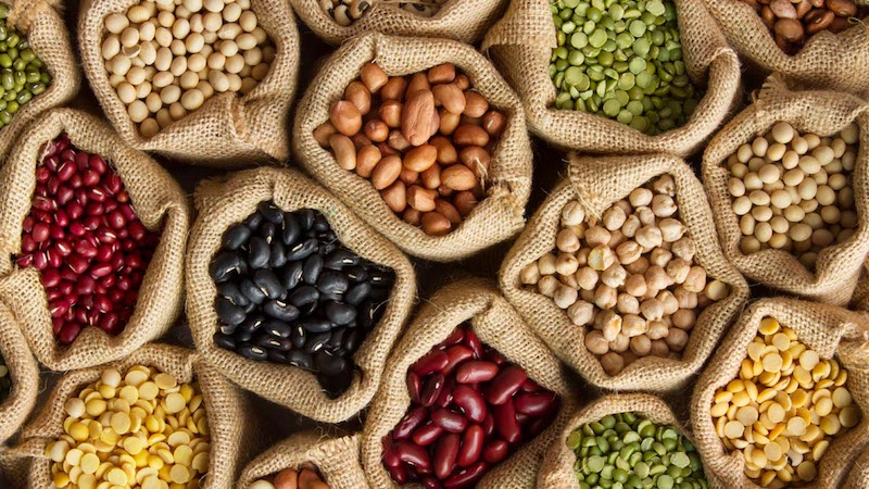 Plant Protein Intake Linked to Reduced Dementia, Cardiovascular Risk
