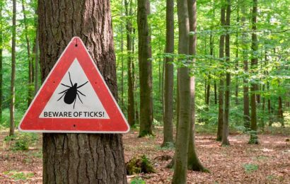 Learn About Lyme Disease: Are You at Risk?