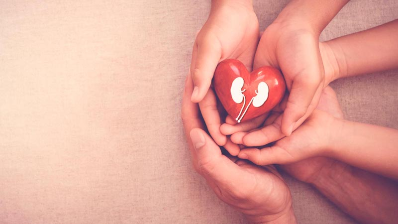 New Drug Prevents Heart and Kidney Problems in Diabetes Patients